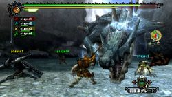 Monster Hunter Tri (11)