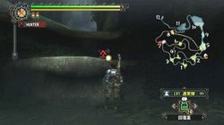 Monster Hunter Tri (4)