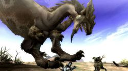 Monster Hunter Tri (6)
