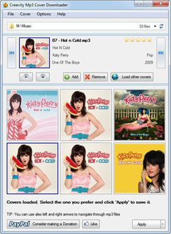 Mp3 Cover Downloader screen 2