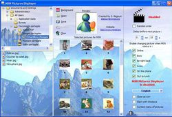 MSN Pictures Displayer  screen 1