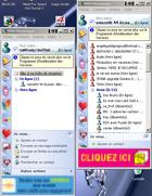 MSN / Windows Messenger Polygamy