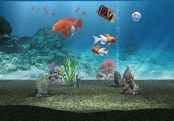 My Aquarium   Image 3