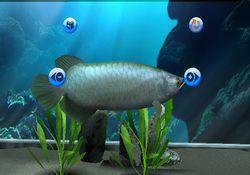 My Aquarium   Image 4