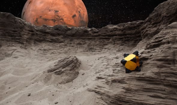 NASA-Hedgehog