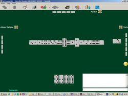 Net Domino screen 1
