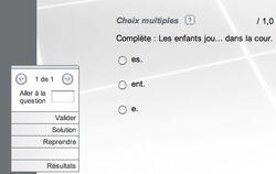 Netquiz Pro screen2