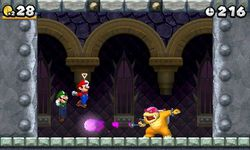 New Super Mario Bros 2 (5)