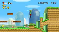 New Super Mario Bros Wii (4)