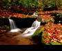 nfsAutumnStream : décorer un PC aux couleurs de l'automne