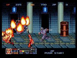 Ninja Combat   1