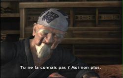 Ninja Gaiden 2 (13)