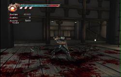 Ninja Gaiden 2 (17)
