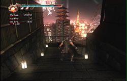 Ninja Gaiden 2 (23)