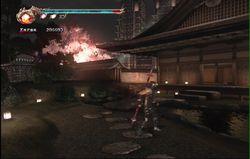 Ninja Gaiden 2 (26)