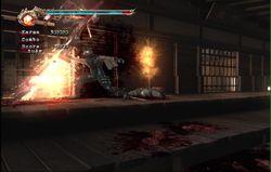 Ninja Gaiden 2 (27)
