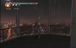 Ninja Gaiden 2 (44)
