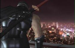 Ninja Gaiden 2 (52)