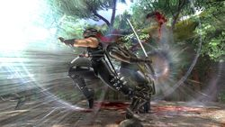 Ninja gaiden 2 image 13