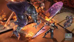 Ninja Gaiden 2   Image 17
