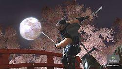 Ninja Gaiden 2   Image 18