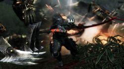Ninja Gaiden 3 (20)