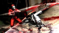 Ninja Gaiden 3 (2)