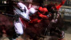 Ninja Gaiden 3 - 5