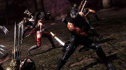 Ninja Gaiden 3 (9)