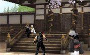 Ninja Gaiden Dragon Sword 3