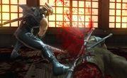 Ninja Gaiden II 1