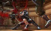 Ninja Gaiden II  2