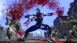 Ninja Gaiden II 3