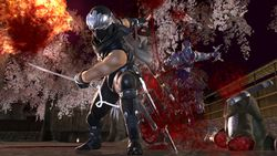 Ninja Gaiden II   4