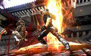 Ninja Gaiden II 5