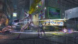 Ninja Gaiden II 8