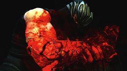 Ninja Gaiden III (5)