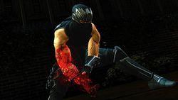 Ninja Gaiden III (6)