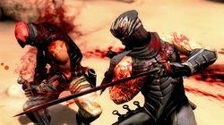 Ninja Gaiden3 (7)