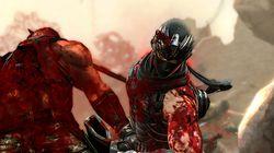 Ninja Gaiden3 (8)