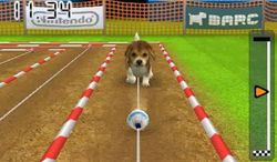 Nintendogs + cats (2)