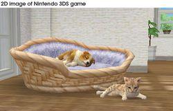 Nintendogs + cats (6)