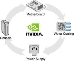 Nvidia cycle