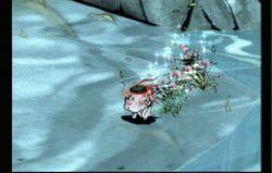 Okami Wii (3)