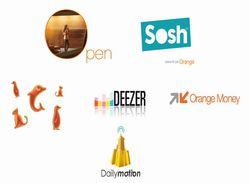 Orange-rapport-annuel-2011