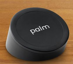 Palm touchstone