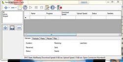 Parrot BitTorrent Client screen1