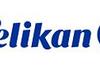 Cartouches d'encre : HP obtient gain de cause contre Pelikan