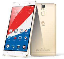 Pepsi Phone P1 (2)