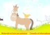 Pets Dating : site francophone de rencontres pour animaux